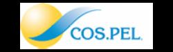 COS-PEL-300x90-1